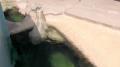 曽々木海岸 窓岩ライブカメラと雨雲レーダー/石川県輪島市