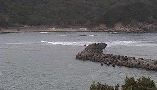 停止中:海洋自然博物館マリンジャム周辺の海ライブカメラと気象レーダー/徳島県海陽町