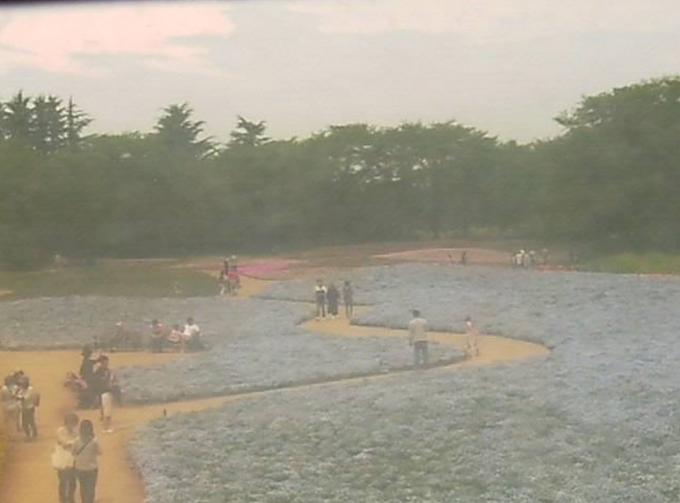 東武トレジャーガーデンライブカメラと雨雲レーダー/群馬県館林市