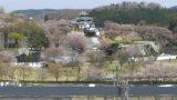 白河小峰城ライブカメラと雨雲レーダー/福島県白河市