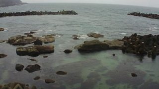 加茂水族館周辺の海ライブカメラと気象レーダー/山形県鶴岡市