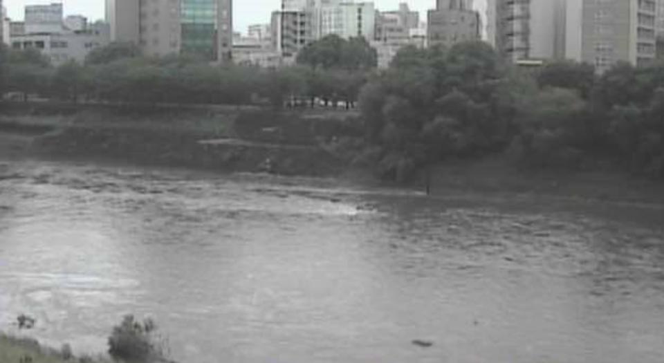 白川・緑川・国道3・57・208号 ライブカメラと雨雲レーダー/熊本県