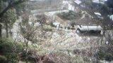 千光寺山頂周辺の桜ライブカメラ(期間限定)と気象レーダー/広島県尾道市