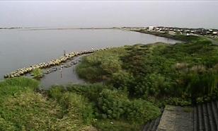 阿賀野川など松浜橋周辺ライブカメラと気象レーダー/新潟県新潟市