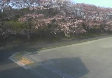 リバーライン(商工会裏桜並木)付近ライブカメラと気象レーダー/福島県浪江町