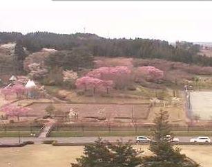 日本国花苑ライブカメラと雨雲レーダー/秋田県井川町