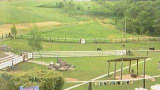 ビバアルパカ牧場ライブカメラと雨雲レーダー/北海道剣淵町