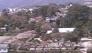 停止中:小田原城ライブカメラと雨雲レーダー/神奈川県小田原市