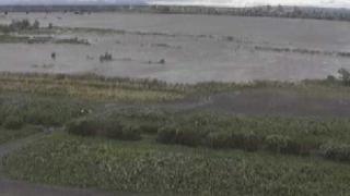 天竜川 ライブカメラと気象レーダー/静岡県浜松市