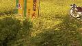停止中:アミューズメント佐渡ライブカメラと雨雲レーダー/新潟県佐渡市(佐渡島)