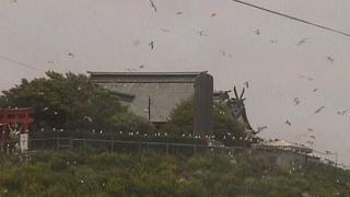 停止中:八戸蕪島ライブカメラと雨雲レーダー/青森県八戸市