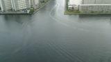 東京運河交差点ライブカメラ2と気象レーダー/東京都江東区