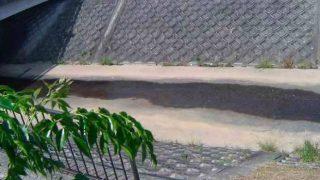 天神川・天王寺川・武庫川・駄六川などライブカメラ(31ヶ所)と雨雲レーダー/兵庫県伊丹市