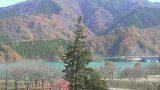 宮ヶ瀬湖のジャンボクリスマスツリーライブカメラと雨雲レーダー/神奈川県清川村