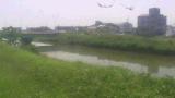 河川監視 ライブカメラと雨雲レーダー/愛知県