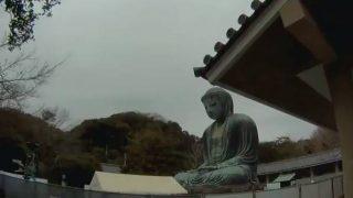 鎌倉大仏殿高徳院ライブカメラと雨雲レーダー/神奈川県鎌倉市