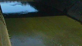 矢上川・三沢川・鶴見川・平瀬川・五反田川などライブカメラ(10ヶ所)と雨雲レーダー/神奈川県川崎