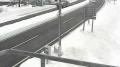 「根室自然環境保全区」ライブカメラと雨雲レーダー/北海道根室市