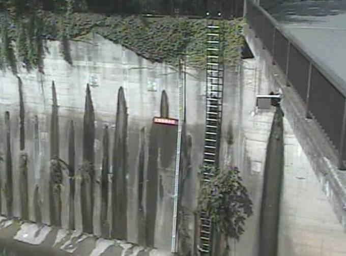 石神井川 ライブカメラ(加賀橋)と気象レーダー/東京都板橋区