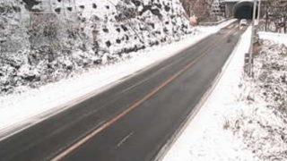 道路情報ライブカメラ(73ヶ所)と雨雲レーダー/群馬県