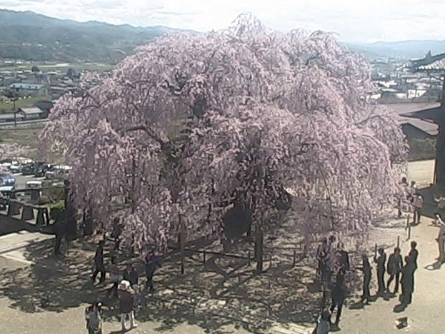 座光寺麻績の里ライブカメラと雨雲レーダー/長野県飯田市