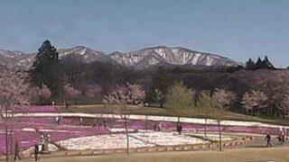 赤城南面千本桜ライブカメラ2と雨雲レーダー/群馬県前橋市