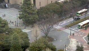 早稲田大学 大隈講堂周辺ライブカメラと雨雲レーダー/東京都新宿区
