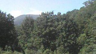 山形県立自然博物園ライブカメラと雨雲レーダー/山形県西川町