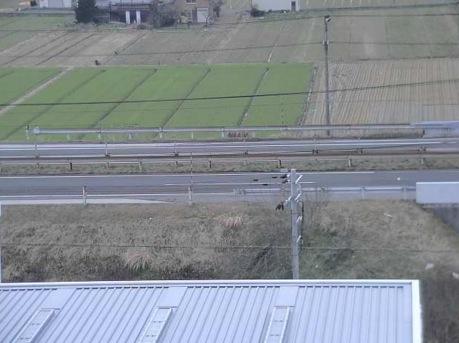 北陸道・県道259号・積雪量などライブカメラ(5ヶ所)と気象レーダー/滋賀県長浜市