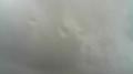 広野町、樽葉街、富岡町、川内村、大熊町、双葉町、浪江町、葛尾村ライブカメラと雨雲レーダー/福島県双葉郡