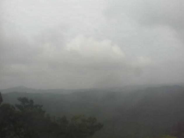 やんばるの照葉樹林ライブカメラと雨雲レーダー/沖縄県国頭村