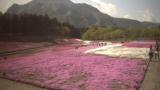 秩父羊山公園ライブカメラと雨雲レーダー/埼玉県秩父市