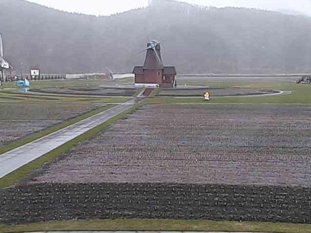 かみゆうべつチューリップ公園ライブカメラと雨雲レーダー/北海道湧別町