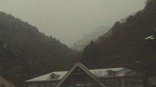高尾山 ライブカメラ(高橋屋)と気象レーダー/東京都八王子市