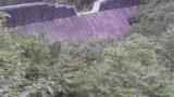 木曽川水系:二反田川・上田沢の砂防ライブカメラ(2ヶ所)と雨雲レーダー/長野県大桑村