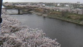 五条川ライブカメラと雨雲レーダー/愛知県清須市
