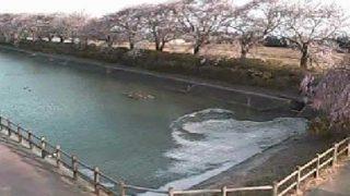 停止中:白鳥の館ライブカメラと気象レーダー/福島県楢葉町