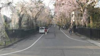 角館武家屋敷通りライブカメラと雨雲レーダー/秋田県仙北市