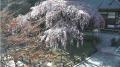 国道118号・芦ノ牧ライブカメラと雨雲レーダー/福島県会津若松市