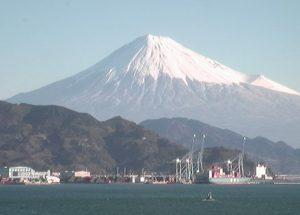 静岡県公式ホームページ(清水区)