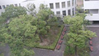 大阪薬科大学ライブカメラと気象レーダー/大阪府高槻市