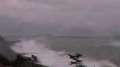 ソフトバンクホークスファンにおすすめ!試合前練習やイベントの模様ライブカメラと雨雲レーダー