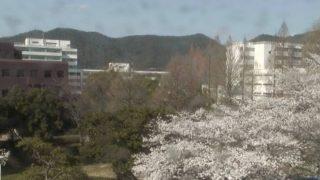 岐阜大学ライブカメラ(3ヶ所)と気象レーダー/岐阜県岐阜市
